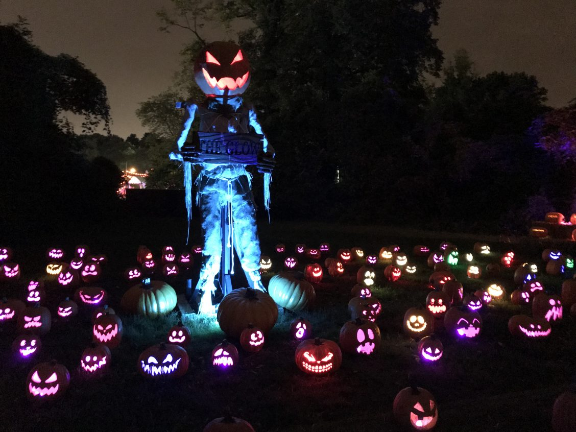 The Glow Jack o Lantern
