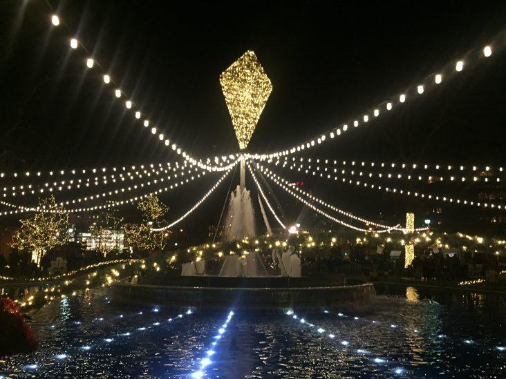 franklin square holiday light show