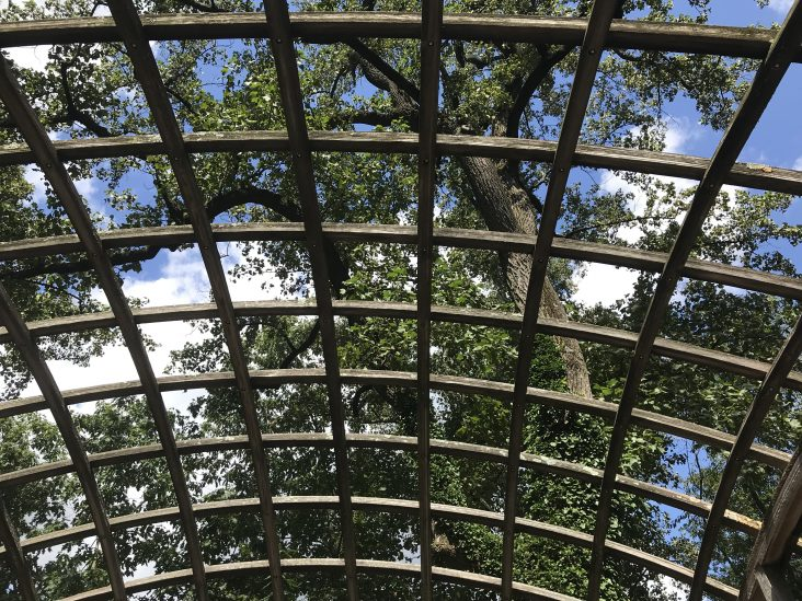 pavillion in the trees